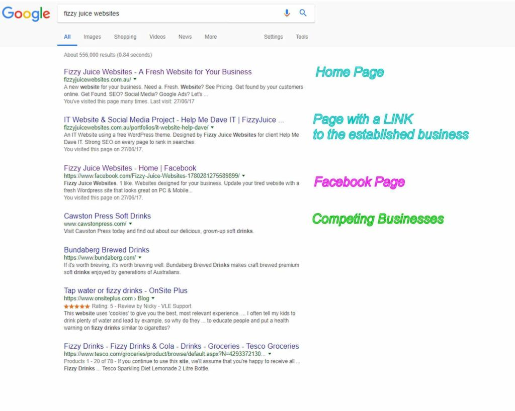 Search Results for Fizzy Juice Websites before Google My Business Verification